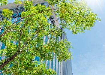 Ny kunnskap sikrer grønnere bygg